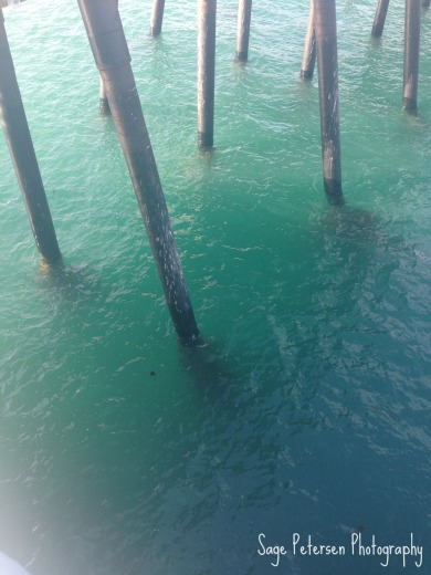 oceanpier