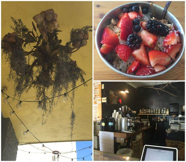 The Lazy Hummingbird CoffeeShop